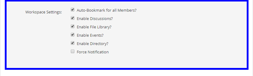 Image showing check boxes for the Workspace Settings to be listed below.