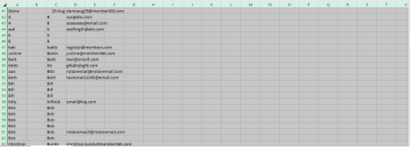 Image showing a sample Excel File with everything selected.